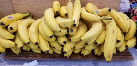 Robert was Thankful when he found Bananas