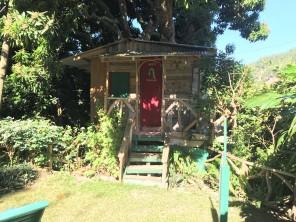 Best tree house I've ever slept in
