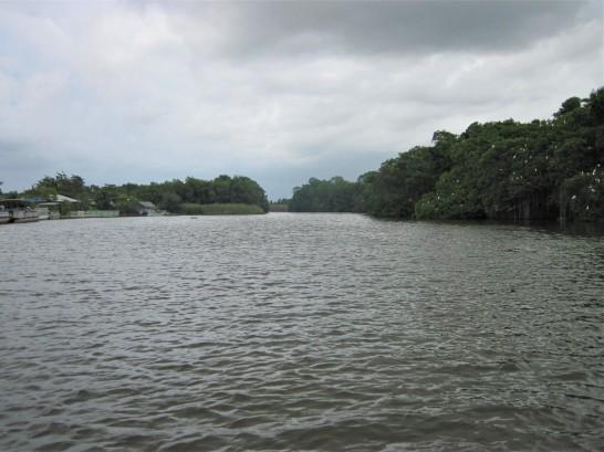 into the Black River